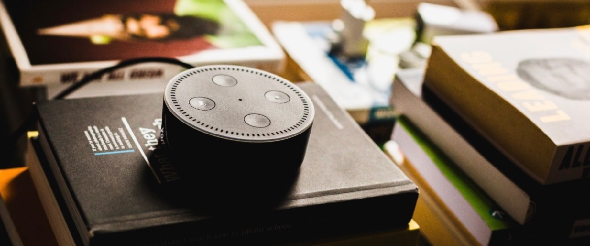 Infographie-statista-hubinstitute-maxime-tricoire-marché-smart-speakers